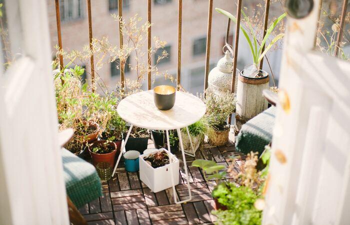 「干す」と聞くと、スペースがないから...と思ってしまわれる方もいらっしゃるかもしれませんが、干し野菜はお洗濯を干す感覚で出来るので、都会のマンション住まいの方もご安心ください。一日中強い陽射しが当たらなくても、程よく日が当たり風通しが良ければ十分干し野菜を楽しむことが出来るんですよ。