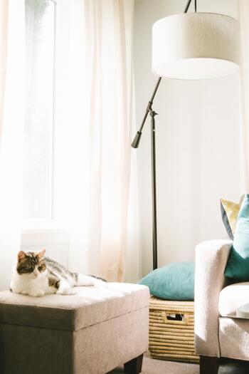 コーナーやベッドサイドに一つ置くだけで、お部屋全体をおしゃれな雰囲気に演出してくれる「間接照明」。 単にインテリアとしてだけではなく、リラックス効果や調光・調色など優れた機能性でも注目されています。 フロアライトやスポットライトなど、さっそくお気に入りの照明を組み合わせて、居心地の良い素敵な空間づくりをしてみませんか?