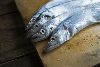 太刀魚は、スズキ目サバ亜目タチウオ科に属する体長1m前後、細長く刀のような姿で、コスメにも使われるキラキラした表皮を持つ回遊魚。水揚げ量は、愛媛、和歌山を中心に西日本に集中。こわもての外見に似ず、ふわりとやわらかな白身が特徴です。