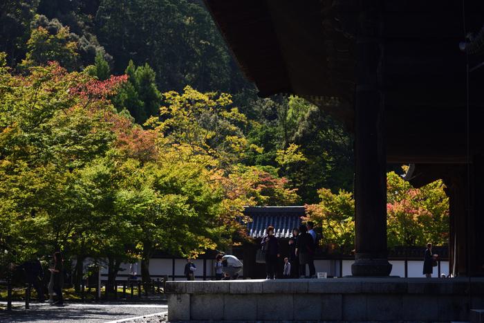 京都市の岡崎エリアにある広大な敷地を持つ寺院、南禅寺は、臨済宗南禅寺派の本山です。