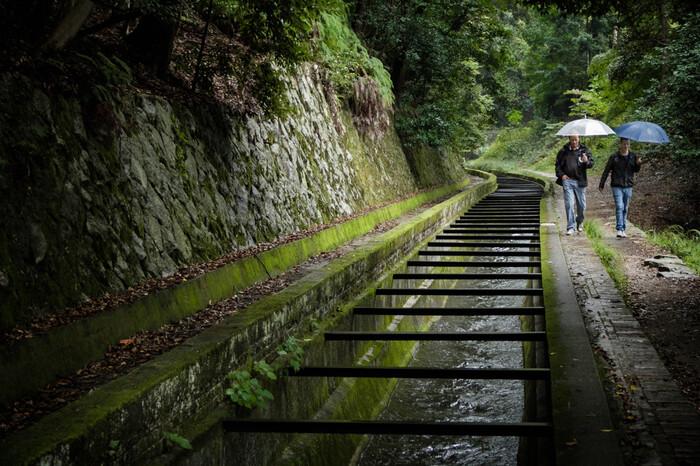 水路閣の上には、関西の水がめである琵琶湖からの水源を京都市内へと結ぶ疎水が流れています。疎水周辺は人が少なく静かで落ち着いた佇まいをしており、散策にはぴったりです。