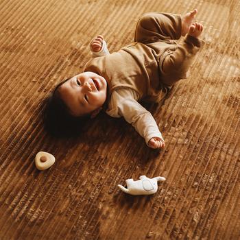 厚生省令の乳幼児基準試験をクリアしたものが、赤ちゃんの居るご家庭には向いています。低ホルムアルデヒド素材で、接着剤などを使っていない製品が、抵抗力の弱い赤ちゃんに優しい製品と言えるでしょう。その他には滑り止め加工が施されていたり、ある程度の厚みがあるラグがお勧めです。