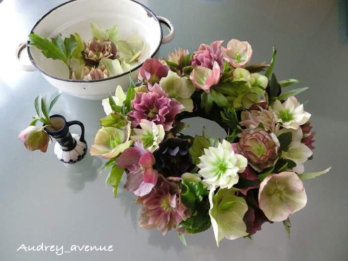 お花を買いに行かなくても、庭に咲くクリスマスローズで、素敵なテーブルリースを作ることができます。うつむきがちに咲く控えめな印象のクリスマスローズも、花首を短めにカットしてアレンジすれば、豪華に仕上がりますね。
