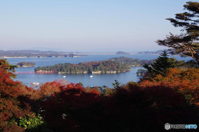 ゲストハウスのある苦竹駅から松島海岸駅まで約30分、仙台の名所として名高い松島。天橋立(京都)、宮島(広島)と並んで日本三景の一つに数えられ、ダイナミックな海から見える島々が美しい絶景スポットです。松島湾内は観光船で巡ることもできますよ。