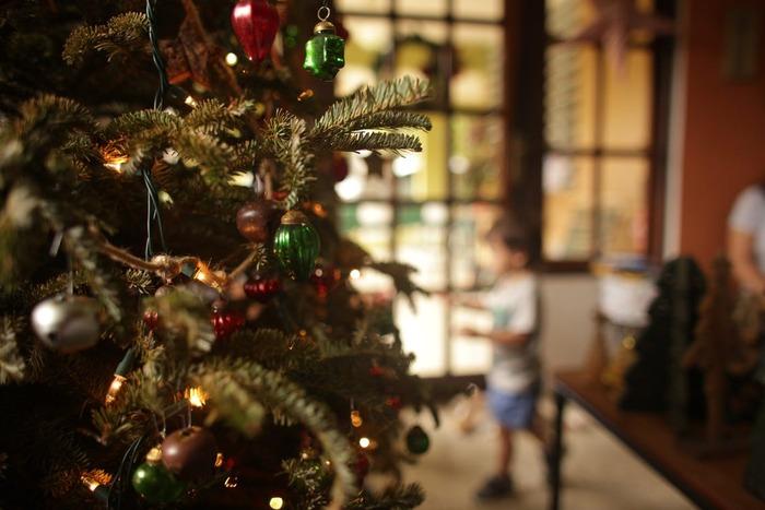クリスマスイヴにピアース兄妹はサンタクロースの姿を撮るために、そりに忍び込んだ。しかし、2人に驚いたサンタクロースはバランスを崩し、墜落してそりが壊れてしまった。トナカイもプレゼントもなくなったサンタクロースを手伝うことになって...。