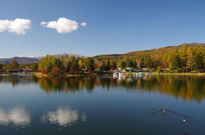 八ヶ岳や茅野(ちの)高原、白樺湖など、自然の観光名所が多い茅野市。そこに広がる「蓼科(たてしな)温泉」は、大自然を活かした高原リゾート地となっています。近くにはキャンプ場やペンションも多く、立ち寄り・日帰りでの利用も多い温泉地です。