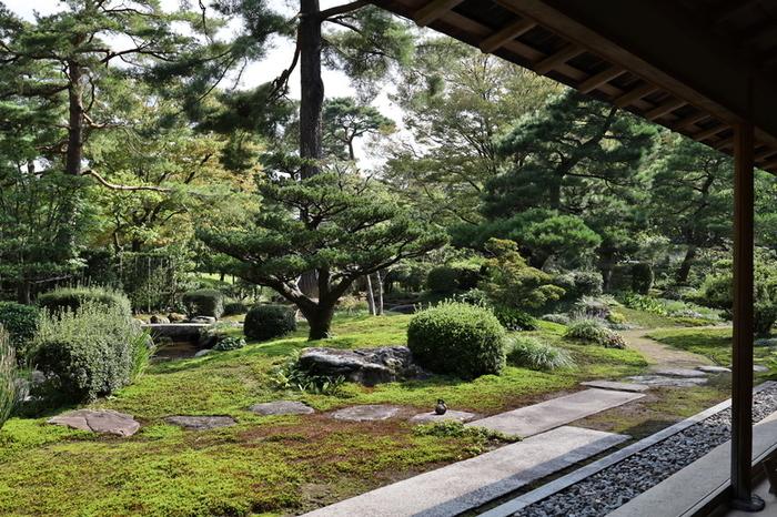 兼六園内の散策に疲れたら、時雨亭で、美味しいお抹茶とお菓子をいただきながら脚を休め、美しい日本庭園を眺めるという贅沢なひとときを味わってみてはいかがでしょうか。