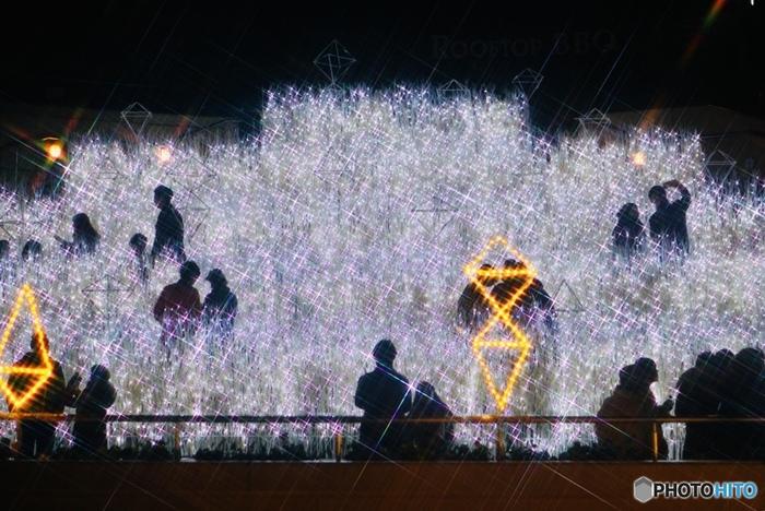 なんば光旅は、「ミナミ」の愛称で親しまれている南海電鉄難波(なんば)駅に直結しているなんばCITY、なんばパークス、なんばスカイオ、高島屋大阪店などで開催されるイルミネーションイベントです。