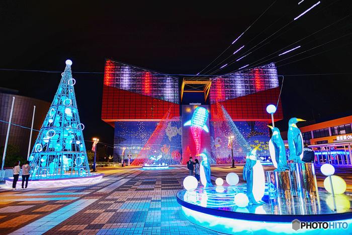 海遊館イルミネーションは、世界最大級の水族館、海遊館前の広場で行われるイルミネーションです。海遊館本館は、ライトアップされ、広場には海遊館で飼育されている様々な生き物たちのイルミネーションが飾られています。