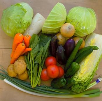 胃腸がお疲れ気味の時は、消化に良いと言われる食材・食品を食べるようにしましょう。例えば、大根や白菜、お豆腐、卵、うどんなど。風邪をひいたときに食べるような、食べやすくて栄養満点のものが良いですね。1日3食、バランスよく食べることも大切です。