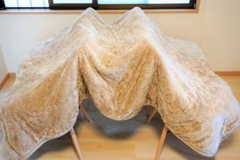 洗った後の乾燥もとても大事。濡れたまま放置してしまうと、せっかく洗ったのに雑菌が繁殖されてしまうこともあるので、なるべく早く乾かすようにしましょう。毛布を洗った後、物干し竿が2本あれば、M字のようにして毛布を干すと、空気に触れる面が多くなり、早く乾きます。