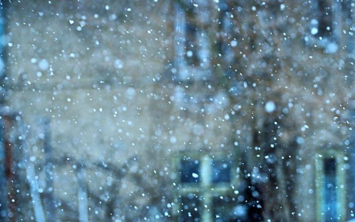 橋本愛主演の「リトル・フォレスト冬・春」は、五十嵐大介の同名コミックを映画化した作品です。春夏秋冬の4部作で、冬・春は後篇になっています。都会から故郷へ戻り、自給自足の生活を送る女性の姿を丁寧に描いています。