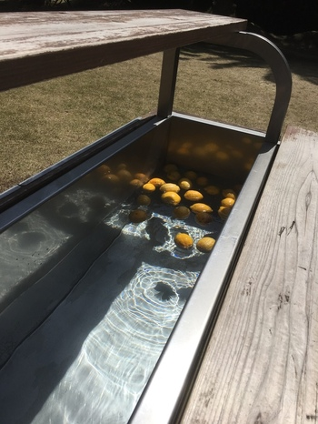 広い敷地には、風を感じながらくつろげるデッキチェアや、無料の足湯も。足湯には地元産のレモンが入れられています。