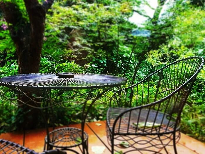 【埼玉】緑の中で深呼吸。自然に癒される「森カフェ」へ出かけよう