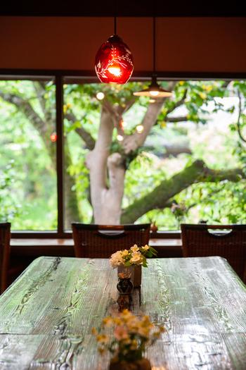【福岡】太宰府天満宮を訪れたら。参拝後に立ち寄りたいおすすめ「ランチ」特集
