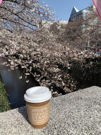 またこの目黒川は、春先になると満開の桜が咲き誇るのが有名ですよね♪Sidewalk Standのコーヒー片手にお花見もとってもおすすめですよ◎