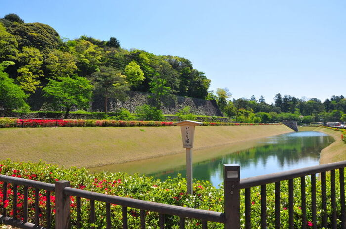 金沢城の南西部を囲む外堀としての役割を担っていた「いもり堀」は、江戸時代には深さ10メートル、幅が40メートルもありました。残念ながら明治時代に埋め立てが行われてしまいましたが、遺構となった静かな水面を眺めながら、加賀百万石の城を守っていた堀としての栄光の歴史に想いを馳せてみてはいかがでしょうか。