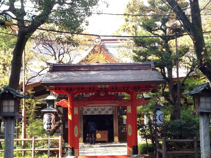 地下鉄の神谷町駅や虎ノ門駅からのアクセスが便利です。東京都港区という都会にある神社でありながら、23区内で一番高い山とされる、愛宕山の山頂にあることから都会のオアシス的な存在でもあります。四季折々楽しめる木々も人々を楽しませてくれています。