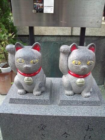 境内にある多数の招き猫の中でも特に人が集まるのが、2匹の猫が並ぶ本殿横の招き猫です。まるで中の良い夫婦のように並んでいることから、待ち受けにすると良縁に恵まれるなど、大変縁起が良いとされています。