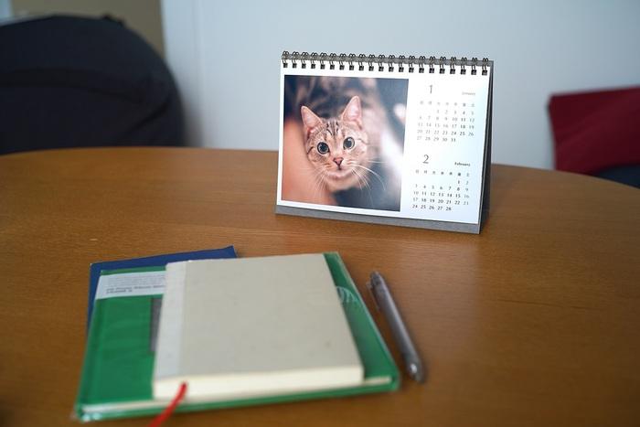 飼っているペットの写真をフォトフレームに入れて飾るのは気が引けますが、カレンダーならオフィスのデスクに欠かせないアイテムなので大丈夫。こっそり癒されながらお仕事に励めそうです。 大切なペットもカレンダーも他では手に入らないもの――自分だけのちょっと特別な気分を味わえるのも『PDAY』の魅力です。