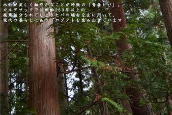 青森ヒバを扱う材木屋で生まれ育ったデザイナーが、ヒバの持つ魅力を広めたいという思いから作ったヒバシリーズは、抗菌、防虫、消臭など、嬉しいアイテムが揃っています。