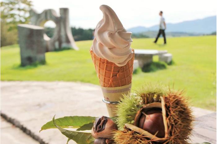 「笠間工芸の丘」でランチや休憩するのなら、丘の上に位置するセンタープラザ内の「クラフトカフェ(CAFE LOUNGE)」がおすすめです。テラス席のある店は、眺めも味も良いと評判。 【笠間工芸の丘「クラフトカフェ」の期間限定販売の『栗のソフトクリーム』。栗の風味が濃厚で抜群の美味しさ。】