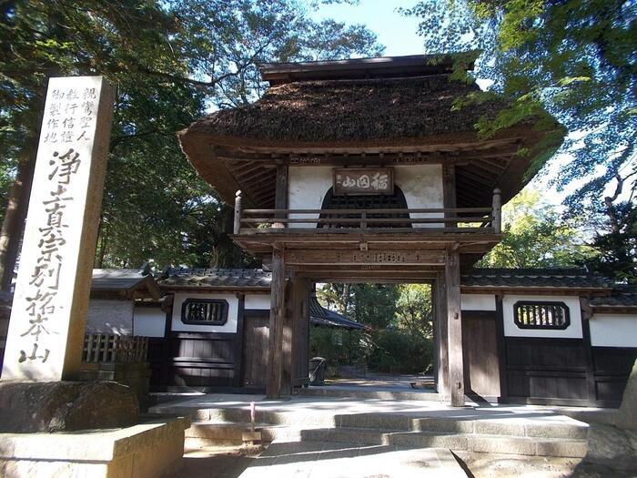 """豊かな緑とともに、しっとりした風情を楽しむのなら、「稲田禅房 西念寺」がお勧めです。 """"稲田御坊""""で親しまれる「西念寺」は、*親鸞聖人が東国の布教活動の拠点として草庵を結んだのを始まりとする、浄土真宗立教開宗の聖地。浄土宗門徒の崇敬を集める、由緒ある仏教寺院です。  【「茅葺きの屋根の「西念寺」山門。欅の大木が聳える長い石畳の参道を抜けるとこの山門に辿り着く。(「西念寺」へは、水戸線「稲田駅」から徒歩で15分程度。車でなら北関東道笠間西インターより5分。)】"""