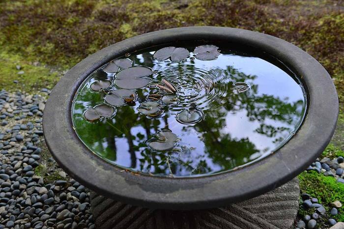 """焼物・カフェ・神社・自然・里山・栗・菓子と、「笠間」の魅力を盛り沢山に紹介しましたが、如何でしたか。 盛り沢山といっても、紹介したのは「笠間」のほんの一面にしか過ぎません。  四方を山々に囲まれ、盆地である「笠間」は、四季の変化、自然の移ろいがしっかりと味わえる豊かな土地。心懐かしい里山の景色は、季節のハイライトに向けて、グラデーションを描くように、日々変化しています。  また「笠間」は、その昔、親鸞が当地を拠点に布教活動を行い、多くの陶芸家らが根を下ろして築窯しているように、新しきを受け入れる度量があり、変化に対して前向きな土地柄です。   水に映る天空が、刻一刻と変化するように。 水面に降りた虫たちが、新しい波紋を広げていくように。 「笠間」の""""今""""は、日々移ろい、景色も食も人も、互いに呼応しあって変化しています。   「笠間」は、都心部からのアクセスが抜群。いつ出掛けても、新しい出会いと発見がある、豊かな里山です。記事を参考に、魅力ある「笠間」へ、ぜひ足を運んで下さい。"""