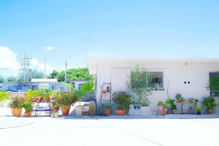 「わわcafE(わわカフェ)」は北谷町浜川の外人住宅街にある、外国人住宅をリノベーションしたカフェ。まっしろな外観で、晴れた日は、空の青×白のコントラストが美しいですね。