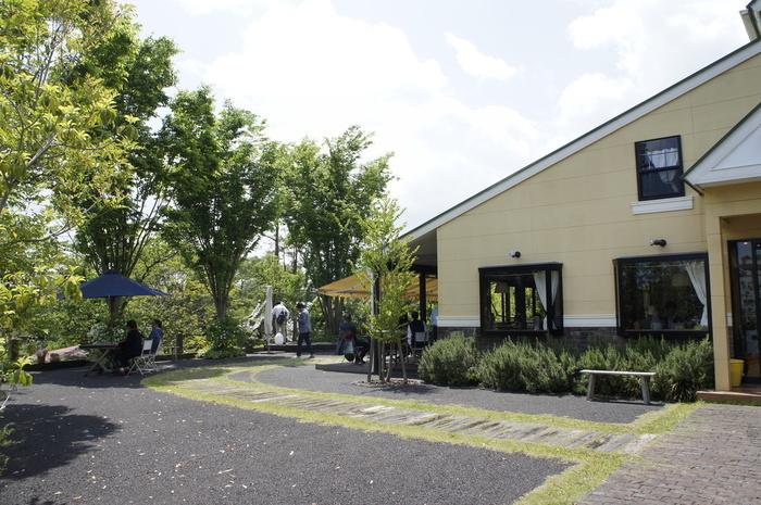 「芸術の森公園」の傍らにある「cafe wasugazen 笠間店 (カフェ ワスガゼン)」は、都内・芝公園にある映画予告編制作会社が手掛ける人気カフェの2号店です。【緑豊かな中庭、テラス席付きの「cafe wasugazen」】