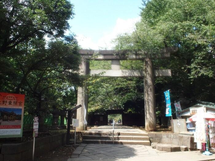 1627年(寛永4年)に創建された大変歴史のある神社です。徳川家康公が祀られており、勝利や出世といったご利益があるとされています。上野東照宮入り口にある鳥居は「大石鳥居」という名がつく国指定重要文化財となっています。関東大震災でも無事であったとされる大変頑丈な鳥居です。
