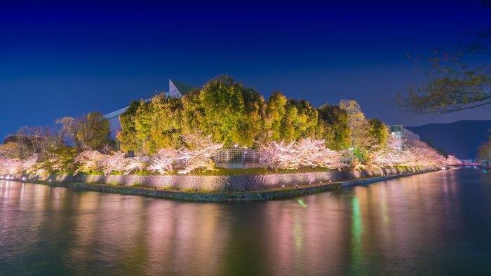 岡崎疎水では、夜桜のライトアップが実施されます。光を浴びて淡ピンク色に輝く桜の樹々を、静かな水面が鏡のように映し出す風景は幻想的で、時間を忘れていつまでも眺めつづけていたくなるほどです。
