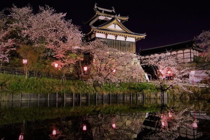 郡山城址では、夜になるとボンボリに灯りがともされ、桜のライトアップが行われます。漆黒の世闇を背景に、光を浴びて浮かび上がる白壁の天守閣と、淡ピンク色の桜の樹々を波一つ無いお濠が鏡のように映し出す様は幻想的で、いつまで眺めていても飽きることはありません。