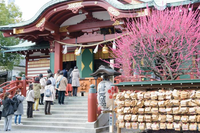 亀戸天神社は、学問の神様である菅原道真公を祀る神社です。境内には、本殿の前を中心に約300本を超す梅が植樹されており、梅が見ごろを迎える時季になると「梅まつり」が開催されます。