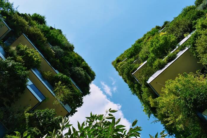 限りある資源を大切にする取り組みが世界で語られるようになり、自然と人間の在り方も再考の段階に入っています。
