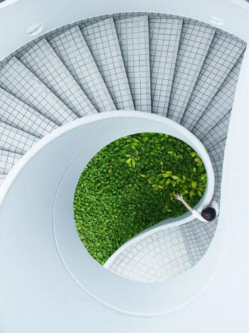 今回は自然と人間、ともに豊かに暮らしていくための気づきを与えてくれるような、自然と共生している素敵な国内建築をご紹介していきます。