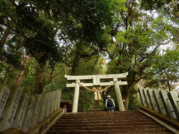 """また、「愛宕山」は、日本三大火防神社の一社とされている「愛宕神社」があることで有名です。大同元(806)年に徳一大師に開山創建されたと伝わる古社で、全国に800以上もの数を誇る愛宕神社の中でも、有数の歴史を誇ります。 【""""百階段""""と呼ばれる拝殿前の石段】"""