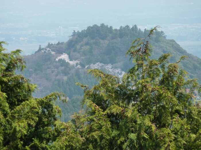 """自然散策もパワースポットも楽しみたいのなら、「愛宕神社」が鎮座する""""愛宕山(あたごさん)""""へ足を運んでみましょう。【難台山の山頂展望台から望む、山桜咲く頃の「愛宕山」(画像中央)。】"""
