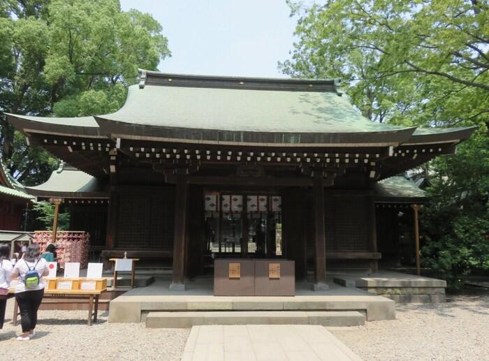 縁結びのご利益で有名な川越氷川神社。カップルにも人気で、デートスポットとしてもおすすめ。小さい釣り竿ですくう鯛のおみくじが人気です。