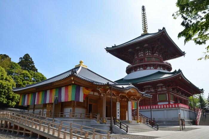 節分に、有名人の豆まきが行われることで有名な成田山新勝寺。成田駅から新勝寺までの参道は、古き良き日本の風景が残っています。お土産屋さんや食べ物屋さんがたくさんあるので、食べ歩きも楽しめます。ご利益は、開運厄除けです。