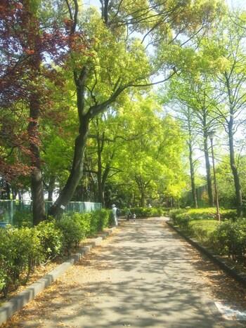 京浜急行線お平和島駅から徒歩10分の場所にある広大な公園です。その敷地面積は6500平方メートルにもなり、自然豊かな木々と歴史的な史跡などがあり、見どころ満載です。