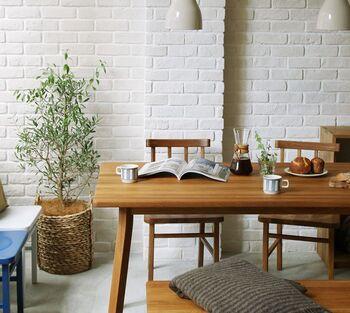 お部屋に植物があると、なんだか優しい気持ちになってほっと癒されそう。新しい年を迎えるとともに、観葉植物をおうちに取り入れてみませんか?清々しく新年のスタートが切れそうです。