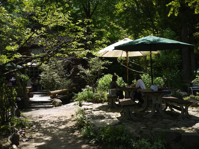cafe sotoには、テーブル席、離れの席以外にも屋外のテラス席があります。緑いっぱいの森のような庭に囲まれたテラス席での居心地は、まるで森林浴をしているかのような気持ち良さです。