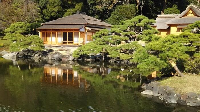 都内唯一の海水の池といわれる、潮入の池も見どころの1つです。中島の御茶屋では上生菓子や蒸し菓子と一緒に美味しいお抹茶がいただけます。