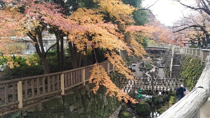 北区の王子にある「日本の都市公園100選」にも選ばれている公園です。浮世絵などにも描かれている音無川が再現されている公園です。都内にありながら風情のある姿は必見です。