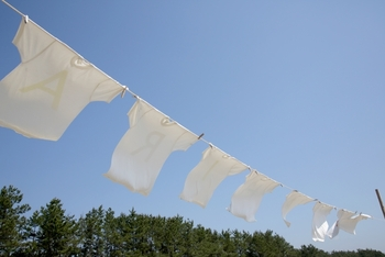 洗濯物はよくシワを伸ばしてから干すのが基本。そうすることによって風に当たる面積が増えるので乾くのが早くなり、また仕上がりも美しくなります。引っ張りすぎると生地が伸びてしまうので、パンパンと手のひらで軽く叩くようにしてシワを伸ばしましょう。