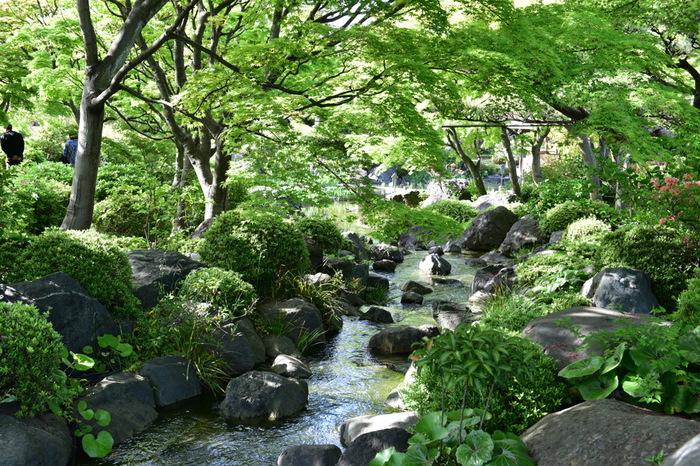 大仙公園・日本庭園は、世界遺産に登録されている仁徳天皇陵古墳の南側に隣接する都市公園、大仙公園の敷地内にある庭園で、「昭和の小堀遠州」と称される造園家、中根金作が手掛けた築山林泉廻遊式の日本庭園です。