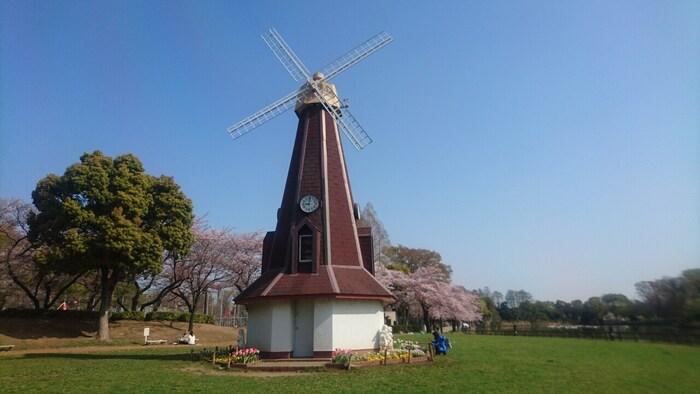 板橋区の水と緑のシンボルとしてJR埼京線の浮間舟渡駅前に広がる大きな公園です。風車や桜並木などが広がり、温かい日にはピクニックや散歩などでゆっくり過ごせます。