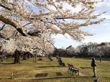 駅からバスで10分ほどの場所には、都立公園の中でも最大規模である「小金井公園」があり、身近に自然を感じられる環境でもあります。
