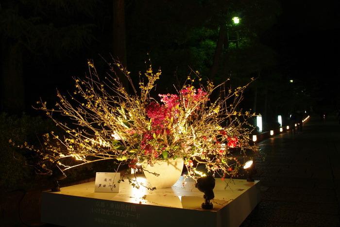 いけなばプロムナードでは、随所にライトアップされた美しい生け花が置かれています。夜、光、花が饗宴する和の伝統文化の素晴らしさにふれてみてはいかがでしょうか。